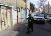 فروشگاه های شهروند در شمال تهران توسعه می یابد