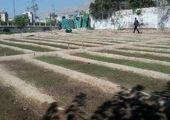 احداث دو هزار و پانصد متر مربع فرش گل در معابر شمال شرق تهران