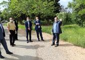 درختان واقع در میدان امام خمینی(ره)، به میدان امام حسن(ع) انتقال داده شدند