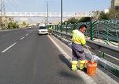 آبشویی بیش از 93 هزار اصله درخت در شمال شرق تهران