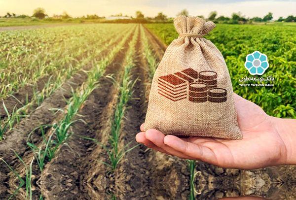 بانک توسعه تعاون 24 هزار و 500 میلیارد ریال تسهیلات اشتغال پایدار روستایی پرداخت کرد