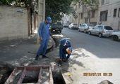 طرح مبارزه با جانوران مضر شهری در شمال شرق تهران