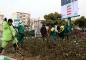 بازیافت خاک ، 120 کیلومتر آبرسانی قطره ای و کاشت گیاهان پوششی در دامنه های شیب دار
