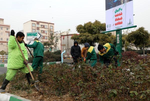 آغاز عملیات کندوکوب ، به زراعی و هرس درختان در سطوح فضای سبز منطقه13