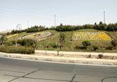 اجرای 130 فرش و سبد گل در  معابر جنوبشرق پایتخت