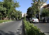 مناسب سازی، دمام زنی  و مدیحه سرایی در معابر و میادین مرکزی تهران در ماه محرم