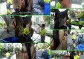 آماده باش نیروهای خدمات شهری منطقه 7 در روزهای بارانی