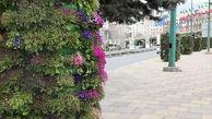 زیبایی های بهار در قابی از گلدان های شهری در معابر منطقه2 به تصویرکشیده شد