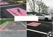 اقدام غیرانسانی مسئولان یک پارک برای جذب گردشگر! +عکس