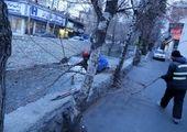 بهسازی معابر خیابان الوند با توجه به تجمع اماکن درمانی و اداری