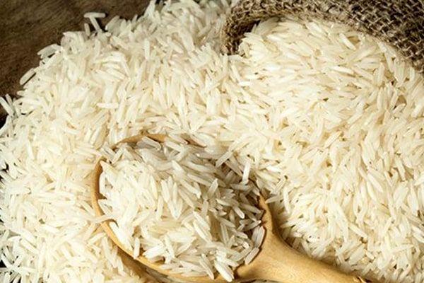واردات برنج ممنوع شد