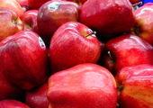 پیدا شدن سوزن در وسط دانههای انگور! +عکس