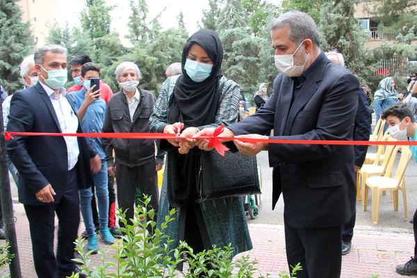 احداث نخستین مزرعه شهروندی منطقه ۴ تهران در محله مجید آباد