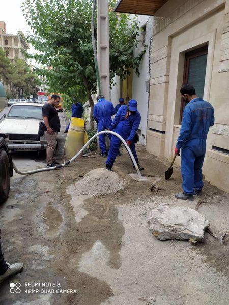 اجرای طرح محله ای مبارزه با موش در منطقه ۱۳