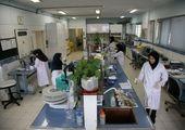 افزایش ۶ درصدی اهدای خون تهرانیها در تاسوعا و عاشورا