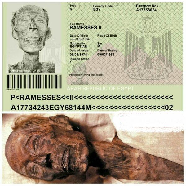 پاسپورت برای یک مومیایی ثروتمند+عکس