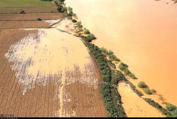 پرداخت 681 میلیارد ریال تسهیلات جبران خسارت سیل توسط بانک کشاورزی استان خوزستان