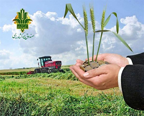 تحقق 118درصدی برنامه بیمه زراعت توسط صندوق بیمه کشاورزی در سال زراعی جاری