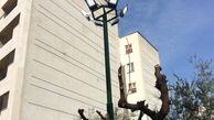روشنایی در بوستان های منطقه 3 افزایش یافت