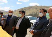 پاسخ سازمان ملی استاندارد ایران به اظهارات نماینده مجلس درباره ذرت آلوده