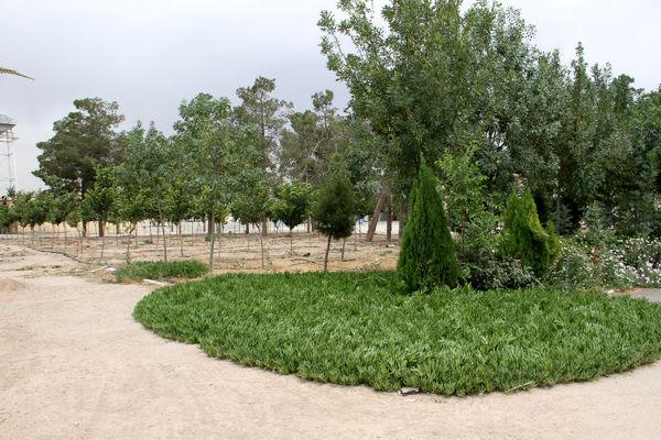 احداث بوستان 15 هزار متری در مسجد مقدس جمکران