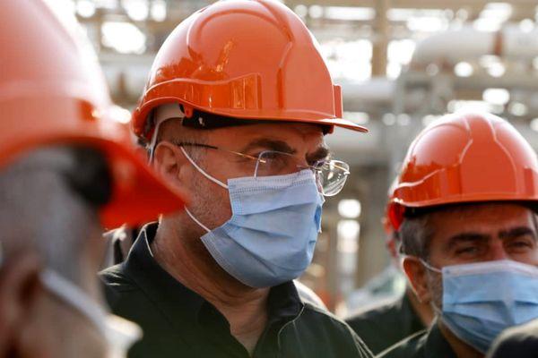 بیدبلند توانست گازهای آلاینده محیط زیست را به یکثروت ملی تبدیل کند