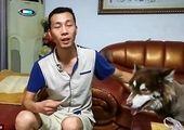 شرایط واگذاری سگ های بدون صاحب به شهروندان