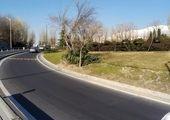 بیش از 22 هزار  اصله درخت در معابر و بوستان های شمال شرق پایتخت هرس شد