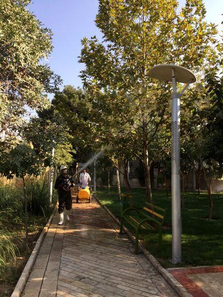 محلولپاشی بیش از 40 هزار اصله درخت منطقه 13