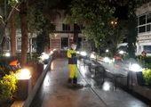 شهرداران نواحی در مقیاس یک به یک محله ها را رصد کنند