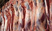 برنامهریزی برای حذف دلالان از بازار گوشت قرمز