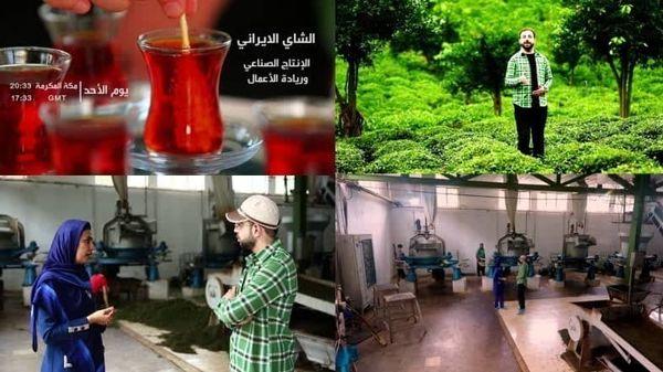 «چای ایرانی- تولید ملی»