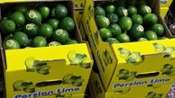 احداث گلخانه تولید لیموترش در استان مازندران با حمایت بانک کشاورزی
