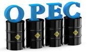 تصمیم اوپک پس از بازبینی قیمتهای نفت گرفته خواهد شد