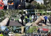 آرامستان اراک، از ۱۵ فروردین ماه سال جاری، تعطیل می شود